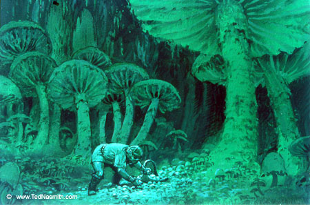 File:Ted Nasmith - Mushroom Gatherer .jpg