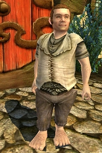 The Lord of the Rings Online - Odovacar Bolger.jpg