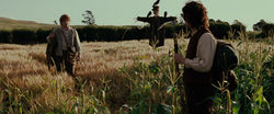 The Lord of the Rings - The Fellowship of the Ring - Sam and Frodo in a wheat field.jpg