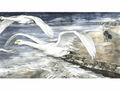 Anke Eißmann - Following The Swans.jpeg