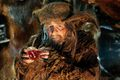 The Hobbit - An Unexpected Journey - Radagast.jpg