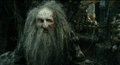 The Hobbit - The Desolation of Smaug - Old Thráin.png